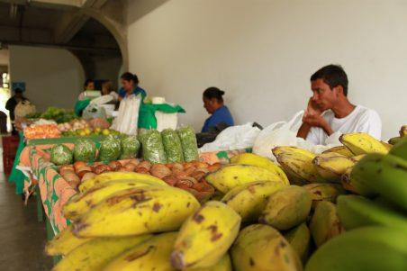 Projeto da UENF tem foco na segurança alimentar