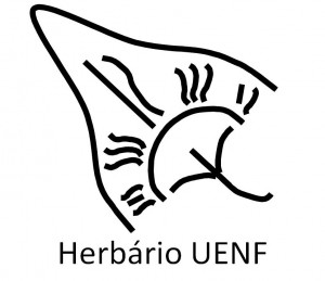 herbario-uenf-300x259